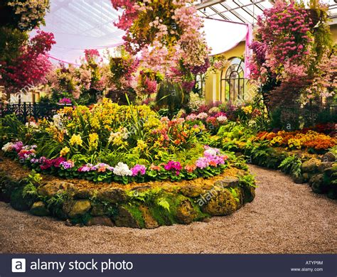 flowers in australian gardens flowers in the conservatory fitzroy gardens