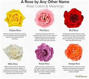 meaning of the color of roses color meanings choose the right color for your