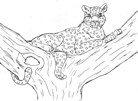 best cheetah print coloring pages with cheetah print