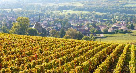 route des vins de bourgogne patrimoine et d 233 gustations