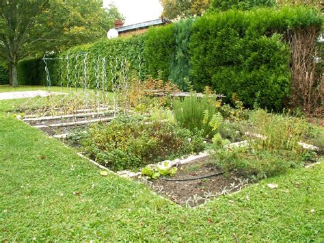 potager de jardin le jardin potager potagic