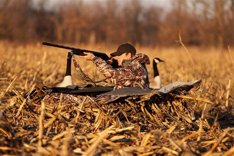 layout blinds for waterfowl hunting which are the best layout blinds for waterfowl hunting in