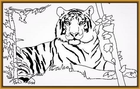 imagenes para pintar tigre dibujos para pintar de tigres y leones para colorear