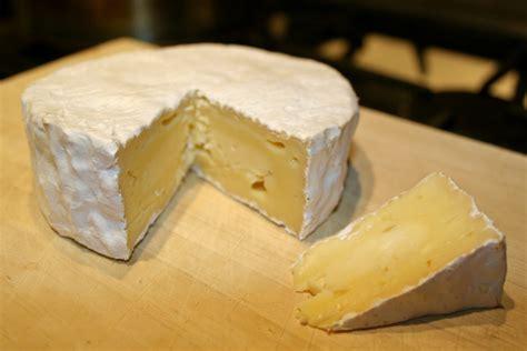 camembert matthew s cheesy stuff