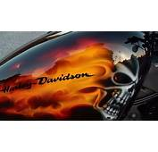 Harley Davidson XL 1200 Sportster Forty Eight Custom Paint