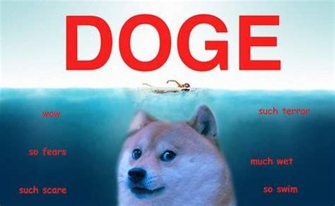 Doge Know Your Meme - lost doge meme original