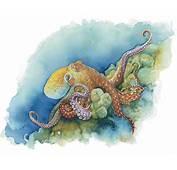 Life Under The Sea Watercolor Octopus