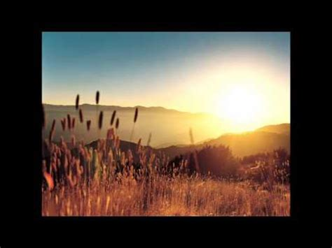 marshmello happier lyrics meaning cofield mundi days lyrics