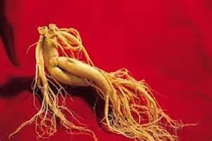 Obat Ginseng konsumsi ginseng selama 30 tahun pasien hiv ini masih