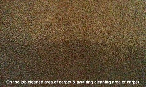 Upholstery Sutherland Shire by How To Choose A Carpet Cleaner Carpet Cleaning St George