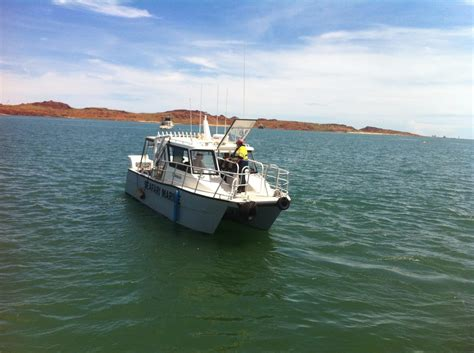 cat boats for sale wa abcat aluminium charter cat commercial vessel boats
