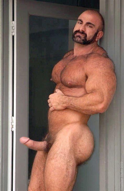 Daddy Bear Tumblr Datawav