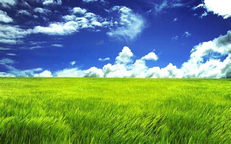 Home Interior Websites Blue Sky And Green Field Widescreen Wallpaper Wide