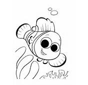 Nemo Coloring Pages  To Print