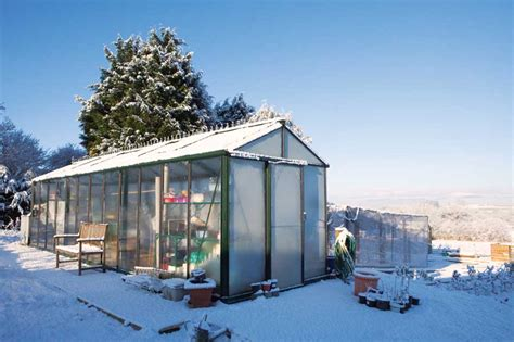 backyard greenhouse winter the very best vegetables to grow in an unheated greenhouse