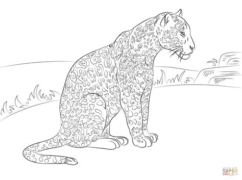 Cute Jaguar Coloring Pages | cute baby jaguar coloring pages coloring pages