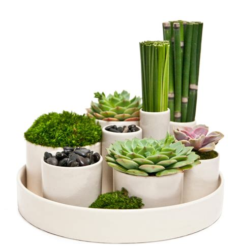 zen garden modern home decor los angeles by floral