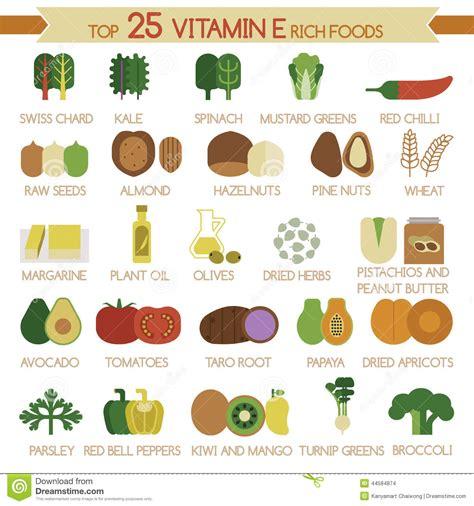 alimenti contenente zinco top 25 vitamin e rich foods stock vector illustration
