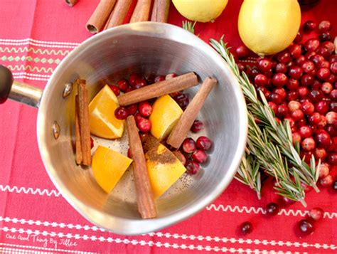 christmas in the air potpourri beyond pumpkin spice how to make your own air freshener at home trulia