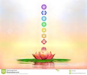 Chakra Lotus Sacred Lotus And Chakras Stock Illustration Image 48748955