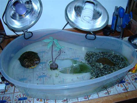 como hacer volados al caparazon de una tortuga a crochet consejos para hacer el h 225 bitat de tortugas en casa