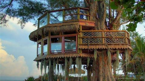 famous tree houses the best luxury tree houses best house design