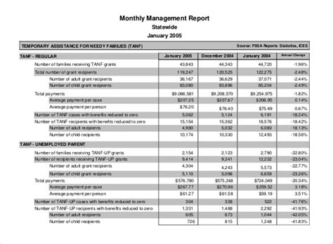 Management Report Exle