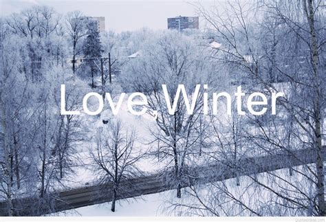 quotes  love winter top winter love quotes sayings