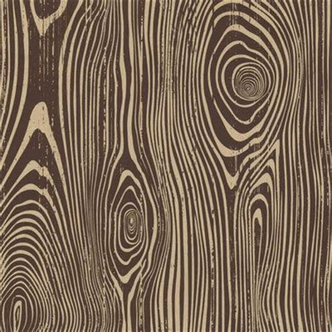 texture pattern recognition 25 best ideas about wood grain texture on pinterest