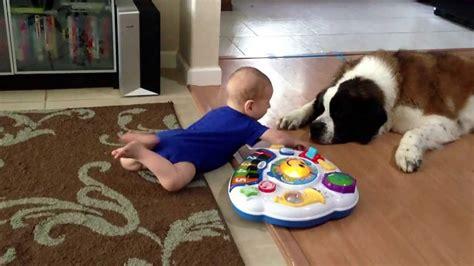 Ww St Kid Baby And St Bernard Meet