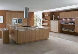 ideas light cabinets dinnerware  of kitchens modern light wood kitchen cabinets kitchen