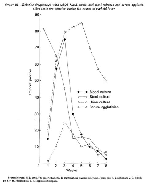 Blood In Stool With Fever by Obtaining Stool Cultures In Infants