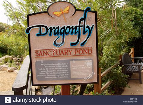 Botanical Garden Signs Sign For Dragonfly Sanctuary Pond Botanical Garden Park Albuquerque Stock Photo Royalty Free