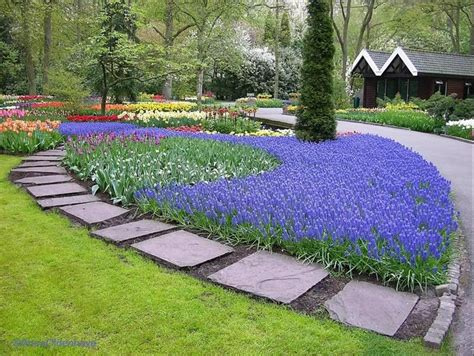 corner lot landscaping ideas 17 images about corner lot landscaping ideas on gardens front yard landscaping and