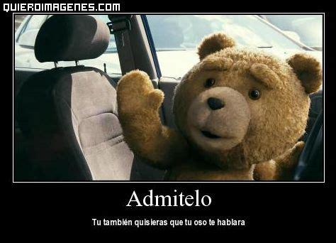 imagenes groseras del oso ted imagenes de el oso ted con frases imagui