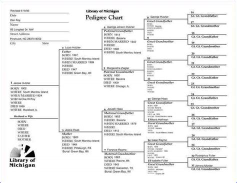 fillable family tree template free home design ideas