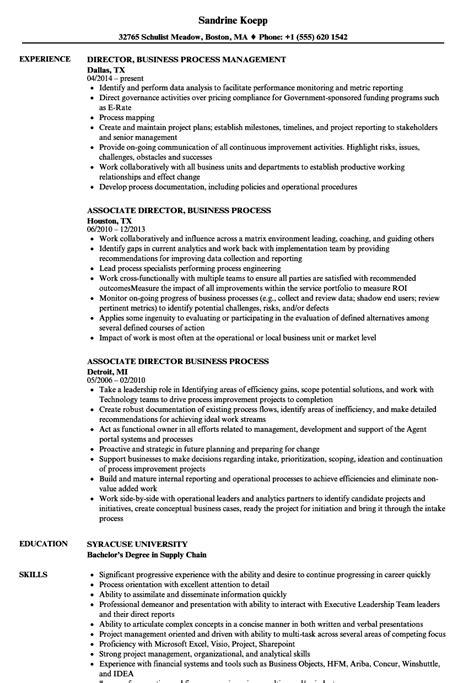 director business process resume sles velvet