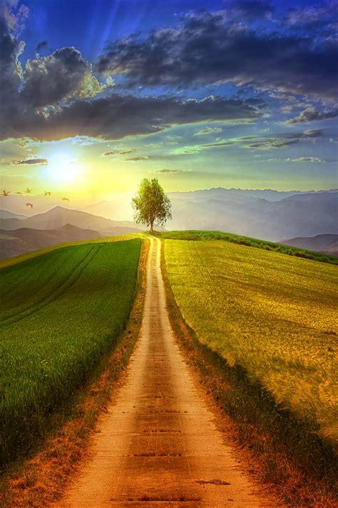 wallpaper scenery mountains sun rays morning hd