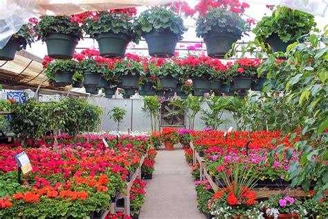 Garden Center Flowers City Floral Garden Center Receives Top Of The Town Honor