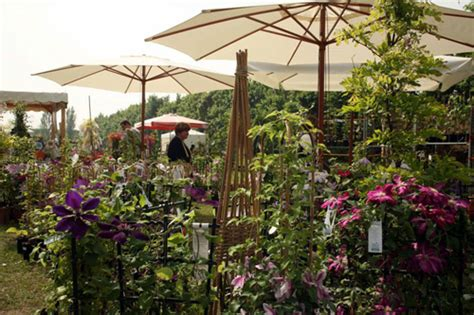 fiori in villa modena florarte 2013 dal 30 marzo al 1 aprile 2013 a modena