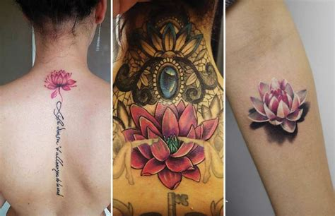 sacred lotus tattoo 60 lotus ideas lotus flower meaning where
