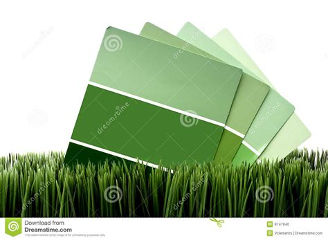 green paint chip sles on green grass stock photo image 9747840