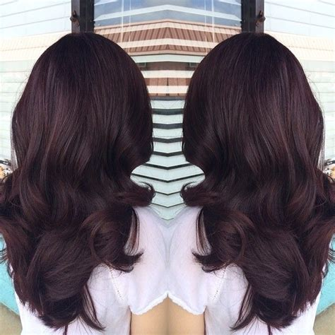deep chocolate brown hair color image result for deep violet chocolate brown hair color