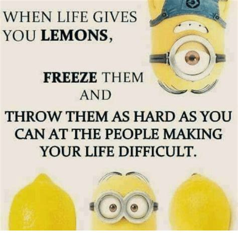 What Should Guests Throw At Me by When Gives You Lemons Freeze Them And Throw Them As