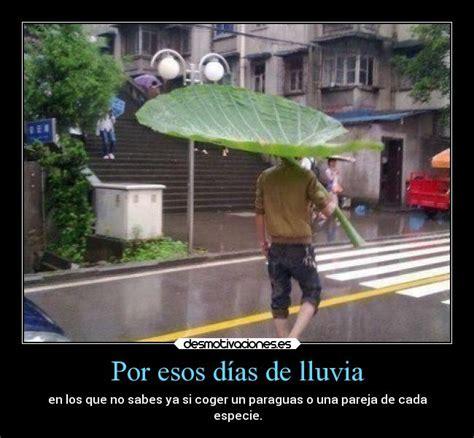 imagenes graciosas para un dia de lluvia por esos d 237 as de lluvia desmotivaciones