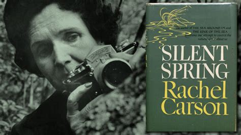 Revisiting Silent Spring | The New Leam