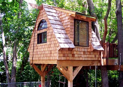 tree house ladder design stl tree house saint louis dream treehouses