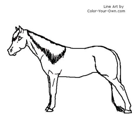 coloring pages of tennessee walking horses tennessee walking horse mare coloring page