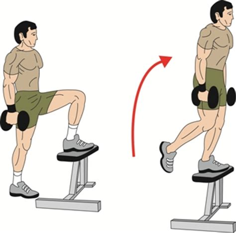 weighted bench step ups barbell dumbbell stepups exercise build strong glutes