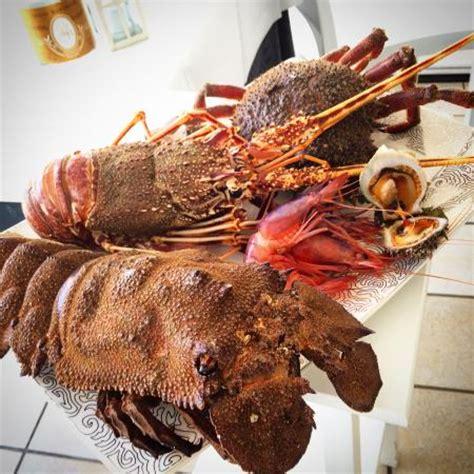 cucinare aragosta surgelata aragoste e cicale foto di al porto cervia tripadvisor